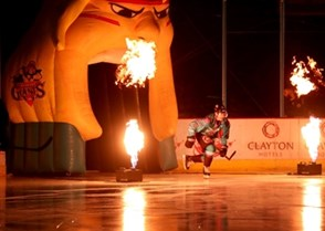 Belfast Giants vs. HK Gomel. Photo: William Cherry